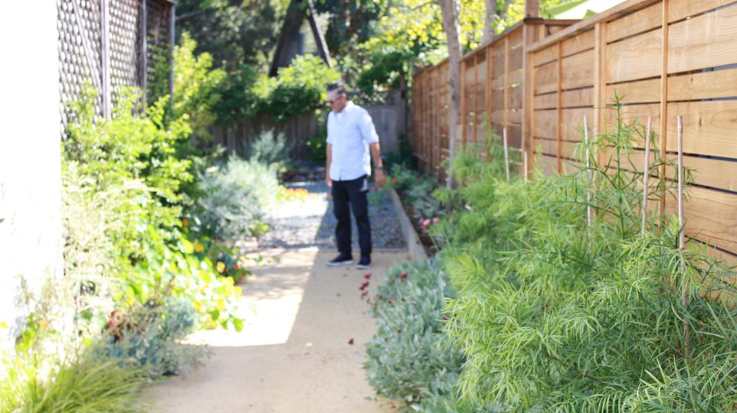 Marco marchesini good garden design for Good garden design